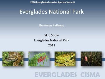 Pythons - Everglades Cooperative Invasive Species Management ...