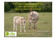 The impact of environmental considerations on meat ... - Young-Train