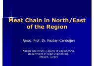 Meat Chain in North/East of the Region - Young-Train