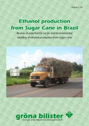 Ethanol production from Sugar Cane in Brazil