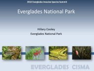 Everglades National Park - Everglades Cooperative Invasive ...