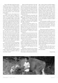 NEBYT SAM 3_2011_na web.indd - Asociácia náhradných rodín - Page 7