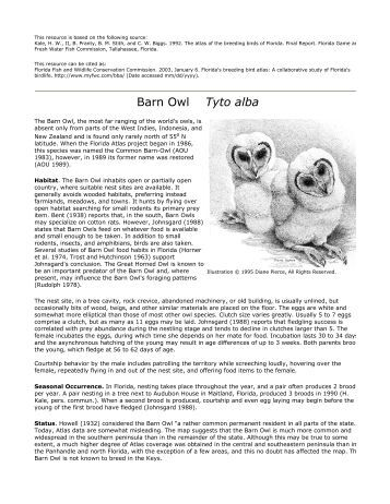 State of the uk barn owl population 2015 for Florida fish and wildlife commission