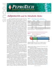 Adiponectin and its Metabolic Roles