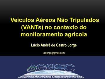 Veículos Aéreos Não Tripulados (VANTs) no contexto do monitoramento agrícola
