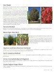 Dr. Michael A. Dirr Offering Future Tree Selections - Page 5