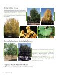 Dr. Michael A. Dirr Offering Future Tree Selections - Page 6
