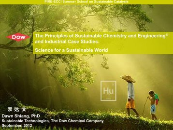 Principles of Sustainable Chemistry & Engineering - PIRE-ECCI