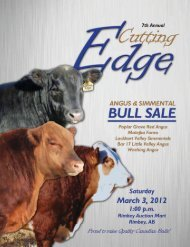 Angus EPD Breed Averages - Bouchard Livestock International