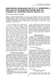 Rhinoptericola megacantha gen. et sp. n., Representing a New ...