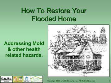 How to Restore Your Flooded Home, Addressing Mold and Other ...