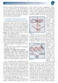 Vergleich unterschiedlicher Techniken zur therapeutischen ... - Seite 3