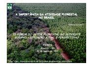 A importância da atividade florestal no Brasil. - Sociedade Brasileira ...