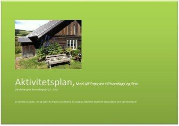 Aktivitetsplan 2013 - Ringsaker kommune