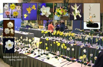 Midwest Daffodil Society Spring, 2008