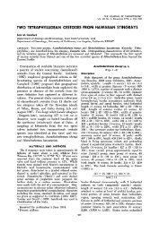 Two Tetraphyllidean Cestodes from Hawaiian Stingrays