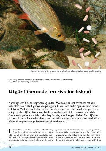 Utgör läkemedel en risk för fisken?