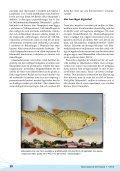 Utgör läkemedel en risk för fisken? - Page 3