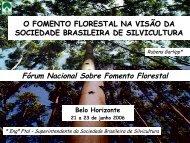 O Fomento Florestal na visão da Sociedade Brasileira de Silvicultura