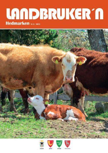 Landbrukern Nr2 2013 Web.pdf - Ringsaker kommune