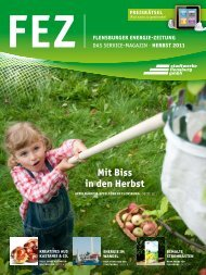 FEZ Herbst 2011 - Stadtwerke Flensburg GmbH