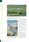 02_BDSkills_DE - Biodiversity Skills - Seite 5