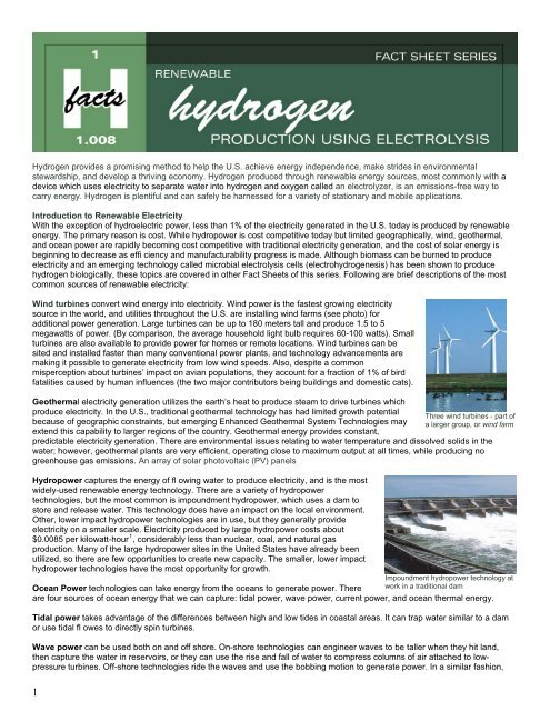 Renewable Hydrogen Production Using Electrolysis - PATH: The