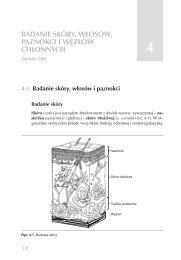 esame della prostata ditola