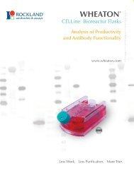 CELLine Analysis of Productivity and Antibody ... - Wheaton