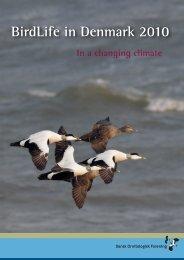 BirdLife in Denmark 2010 - Dansk Ornitologisk Forening