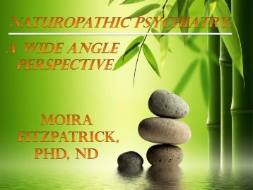 Naturopathic Psychiatry: A Wide Angle Perspective