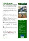 Vinteräventyr med draghundar - Swedish Lapland Fishing - Seite 6