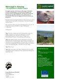 Vinteräventyr med draghundar - Swedish Lapland Fishing - Seite 7