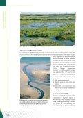 Vat krijgen op beleid en besluitvorming - Biodiversity Skills - Page 5