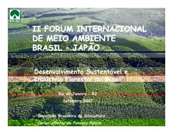 Desenvolvimento Sustentável e Indústria Florestal do Brasil