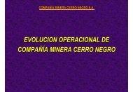 compañía minera cerro negro sa