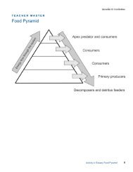 Food Pyramid - Estuaries NOAA