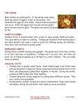 Wild Turkey - Lakeside Nature Center - Page 2