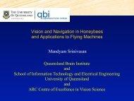 Vision and Navigation in Honeybees - Robotics Design Lab