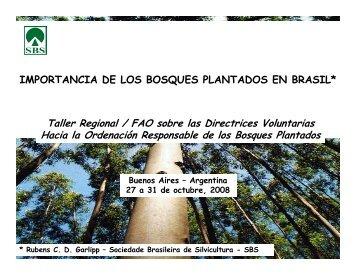 IMPORTANCIA DE LOS BOSQUES PLANTADOS EN BRASIL ...