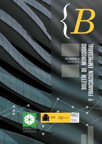 Boletin-morosidad-financiacion-empresarial5