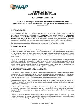 MINUTA EJECUTIVA ANTECEDENTES GENERALES - Enap