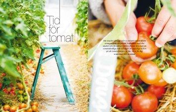Inte mycket går upp mot en solvarm tomat direkt ... - Anna Wendt