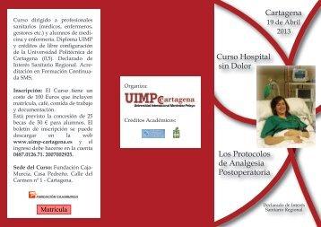 Curso Hospital sin Dolor Los Protocolos de Analgesia ...