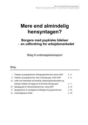 Bilag til rapporten i pdf-format - LAP
