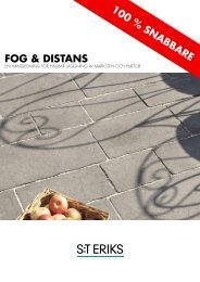 Fog och Distans - S:t Eriks