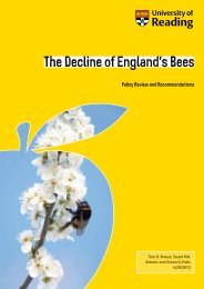 The Decline of England's Bees: Policy Review and Recommendations.