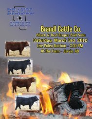 Download Full Sale Catalogue (8.9 mb) - Cattlevids.ca