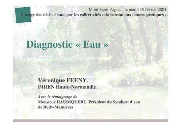 Diagnostic EAU - DREAL Haute-Normandie