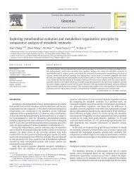 Exploring mitochondrial evolution and metabolism organization ...